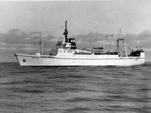 SIRIUS - Beringa 881